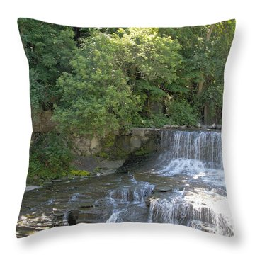 Seneca Keuka Trail Throw Pillow by William Norton
