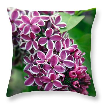 Sensation Lilac Throw Pillow by Richard Engelbrecht