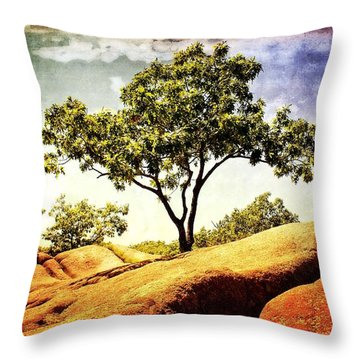 Sentinal Tree Throw Pillow by Marty Koch