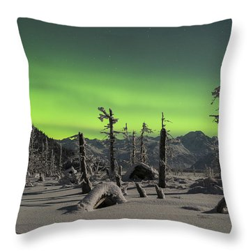 Everywhere The Signs Throw Pillow