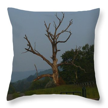 Throw Pillow featuring the photograph Sentinel by Jane Ford