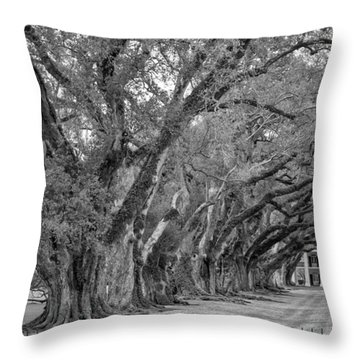 Sentinels Monochrome Throw Pillow by Steve Harrington