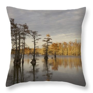 Sentinels Of The Lake Throw Pillow by Jane Eleanor Nicholas