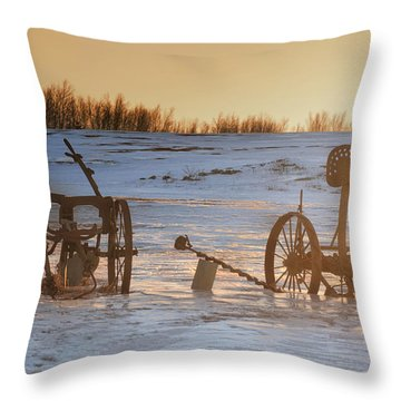 Sentinels On The Hill Throw Pillow