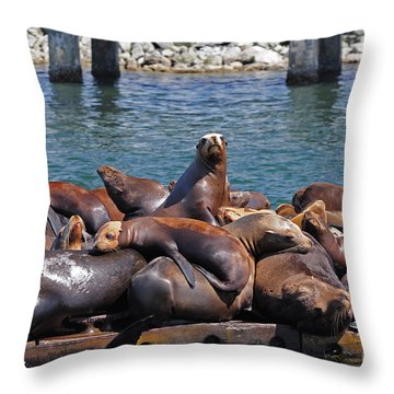 Sentry Sea Lion And Friends Throw Pillow by Susan Wiedmann