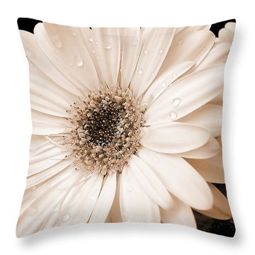 Sepia Gerber Daisy Flowers Throw Pillow