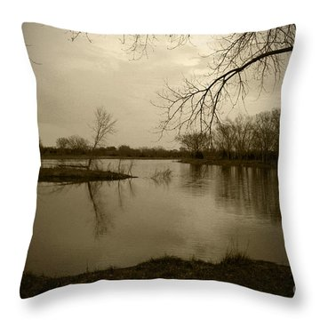Sepia Lake Throw Pillow