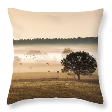 Sepia Landscape From 500 Feet Throw Pillow