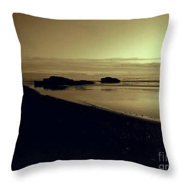 Sepia Study 2 Throw Pillow