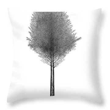 September '12 Throw Pillow