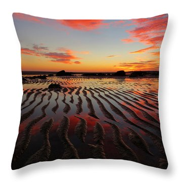 September Brilliance Throw Pillow by Dianne Cowen