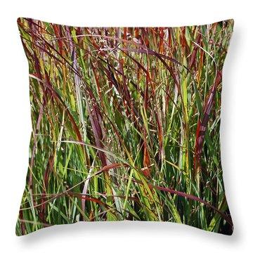 September Grasses By Jrr Throw Pillow by First Star Art
