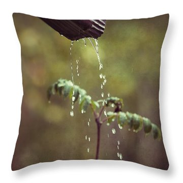 September In The Rain Throw Pillow by Ari Salmela