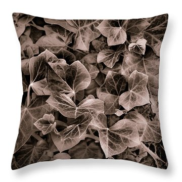 September Ivy  Throw Pillow by Greg Jackson