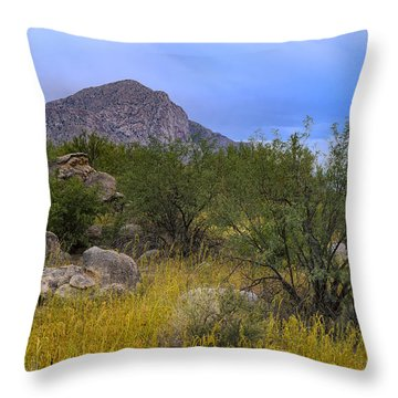 September Oasis No.1 Throw Pillow by Mark Myhaver