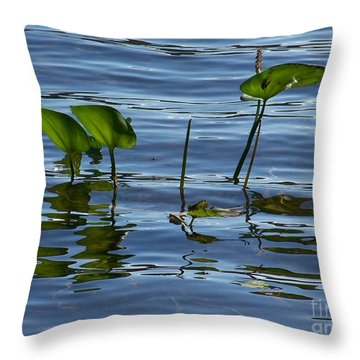 September Reflections Throw Pillow by Jackie Mueller-Jones
