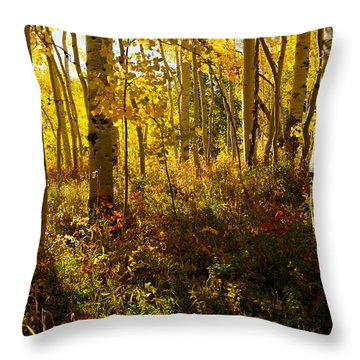 September Scene Throw Pillow