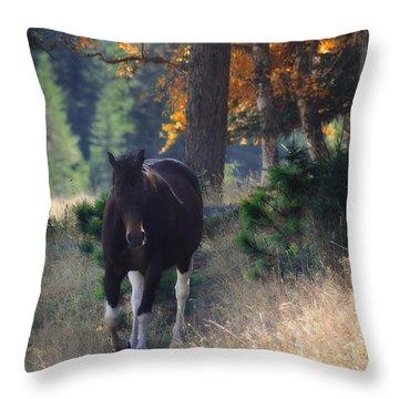 September Surrender Throw Pillow