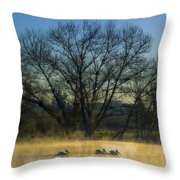 Sepulveda Dam At Dawn On New Year's Day 2015 Throw Pillow by Joe Doherty