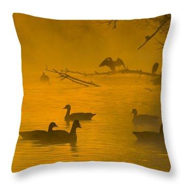 Sepulveda Dam Morning Throw Pillow by Joe Doherty