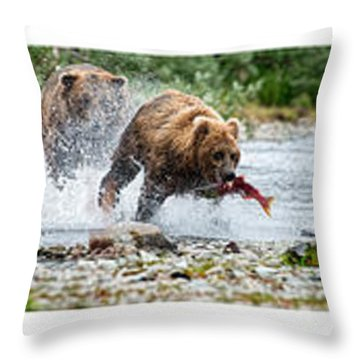 Sequence Of Large Brown Stealing Salmon From Smaller Brown Bear Throw Pillow by Dan Friend