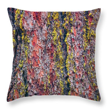 Giant Sequoia Tree Closeup Abstract - Sequoia National Park California Throw Pillow