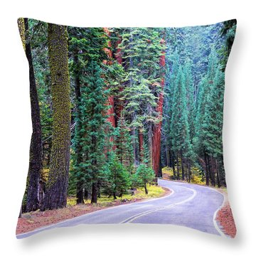 Sequoia Hwy Throw Pillow