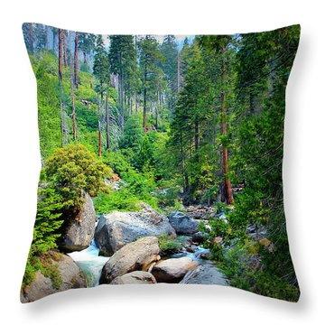 Sequoia Stream Throw Pillow by Heidi Smith