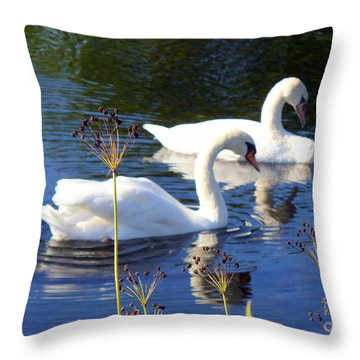 Throw Pillow featuring the photograph Serenade Of  Love by Lingfai Leung