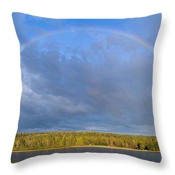 Serendipity Throw Pillow