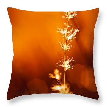 Throw Pillow featuring the photograph Serene by Darryl Dalton