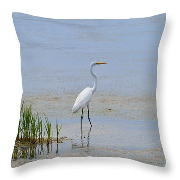 Serene Throw Pillow by Judith Morris