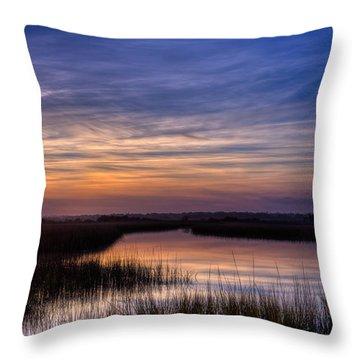 Serene Ravine Throw Pillow
