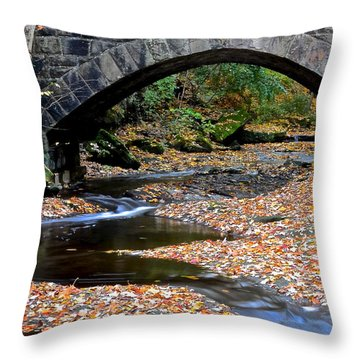 Serene Stream Throw Pillow by Frozen in Time Fine Art Photography