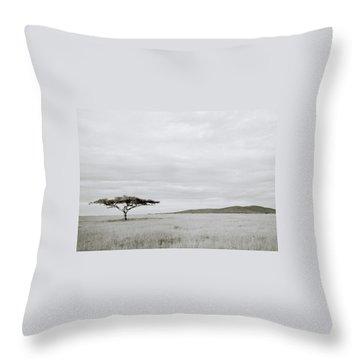 Serengeti Acacia Tree  Throw Pillow by Shaun Higson