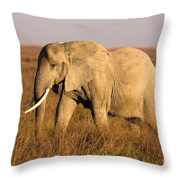 Throw Pillow featuring the photograph Serengeti Elephant by Chris Scroggins