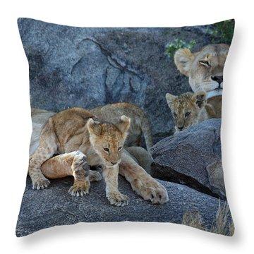 Serengeti Pride Throw Pillow