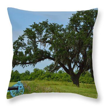 Serenity Throw Pillow by Alys Caviness-Gober