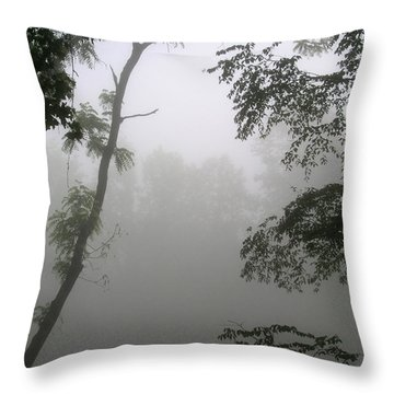 Throw Pillow featuring the photograph Serenity by Craig T Burgwardt