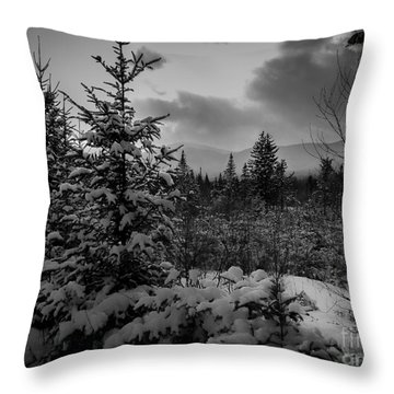 Serenity Throw Pillow by David Rucker