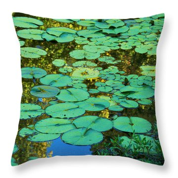 Throw Pillow featuring the photograph Serenity Found - Green Lotus Leaves In Blue Water by Jane Eleanor Nicholas