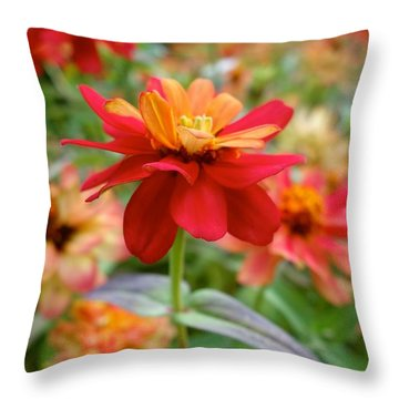 Serenity In Red Throw Pillow