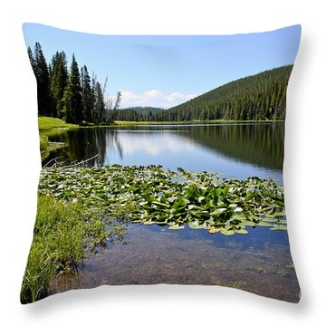 Serenity In Yellowstone Throw Pillow by Teresa Zieba