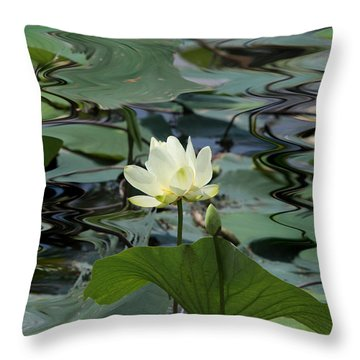 Throw Pillow featuring the photograph Serenity by John Freidenberg