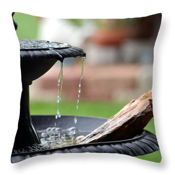 Throw Pillow featuring the photograph Serenity by Linda Cox