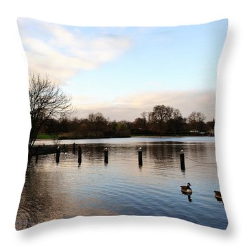 Serenity Throw Pillow by Marwan Khoury