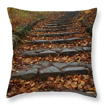 Throw Pillow featuring the photograph Serenity by James Peterson