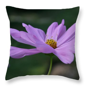 Serenity Throw Pillow by Neal Eslinger
