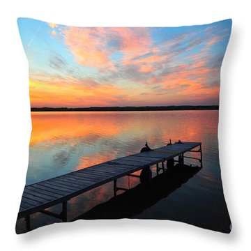 Serenity Throw Pillow by Terri Gostola