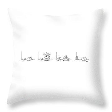 Series Throw Pillow
